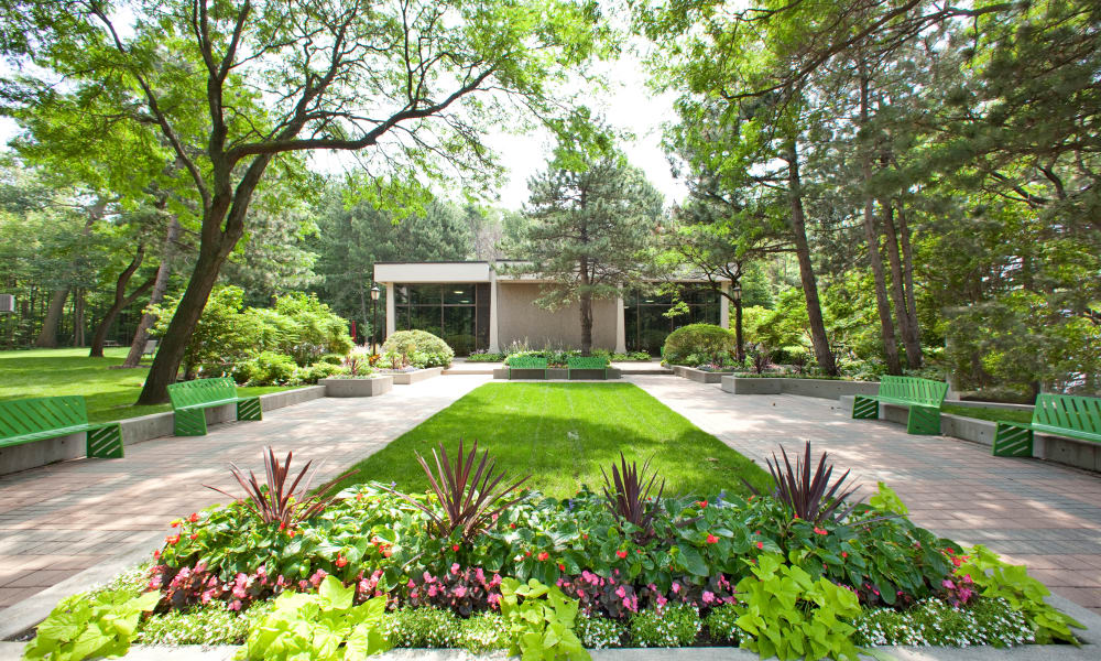 Beautiful lawn at Widdicombe Place in Etobicoke
