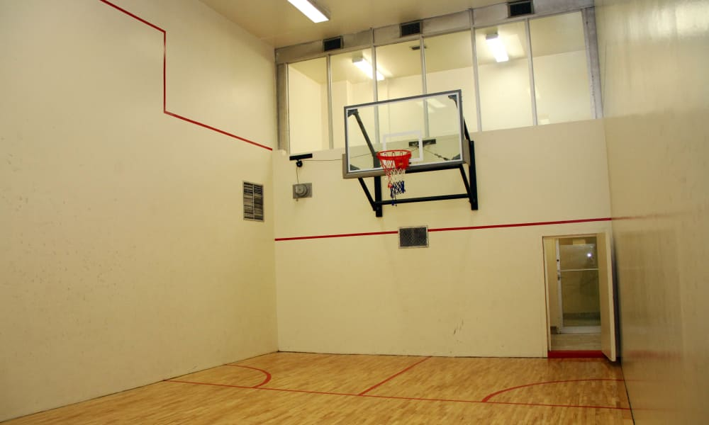 Mississauga Place basketball court