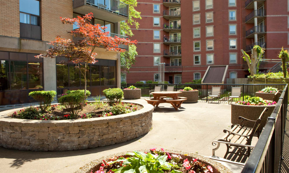 MacDonald Apartments garden area in Halifax