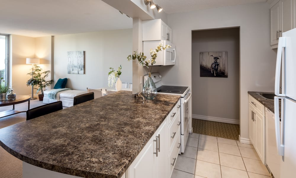 Beautiful countertops at Cunard Apartments in Halifax