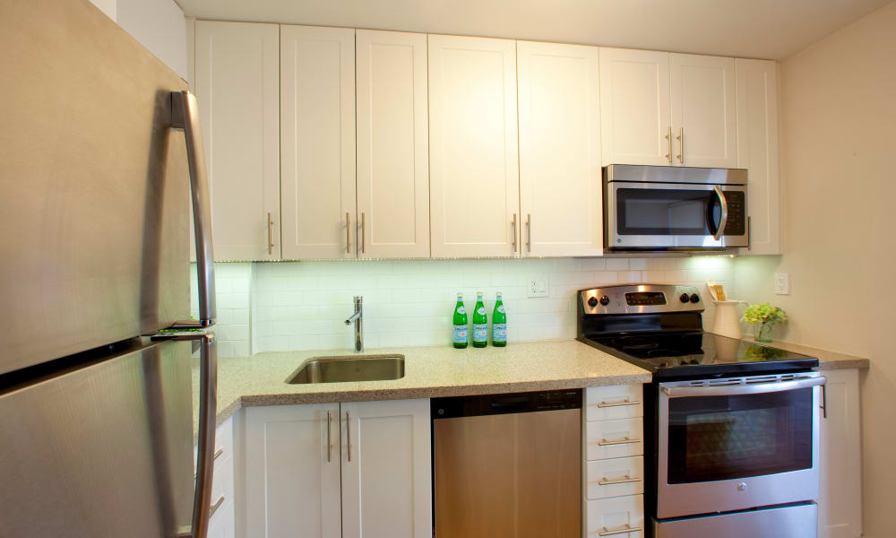 Richmond Hill Apartments showcase a luxury kitchen in Richmond Hill, Ontario