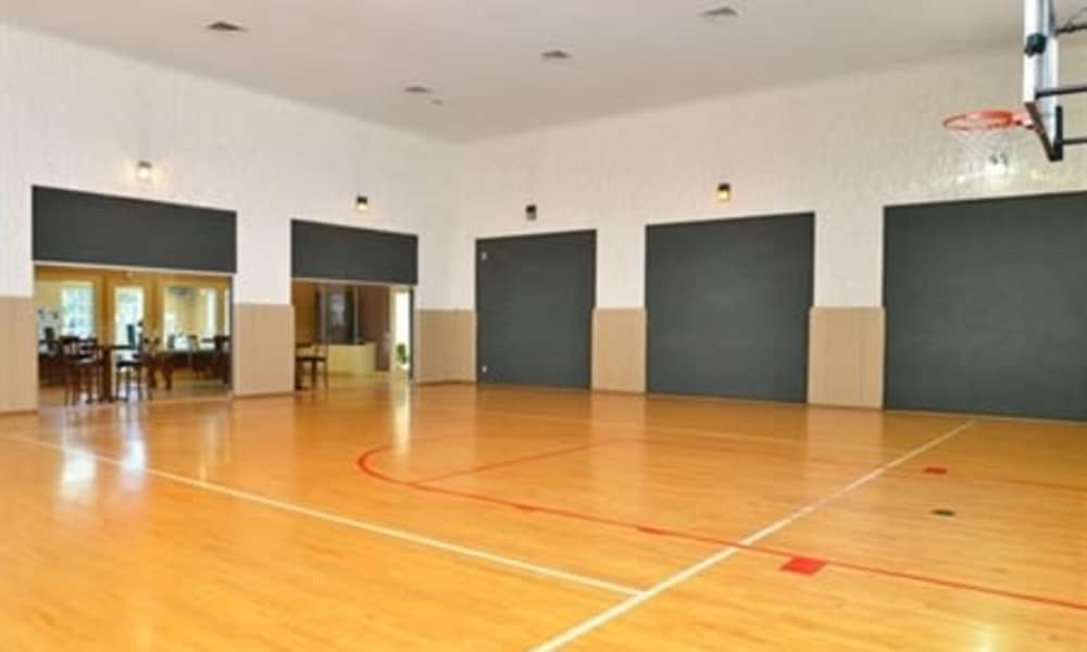 Basketball court at Ashley House in Katy, Texas