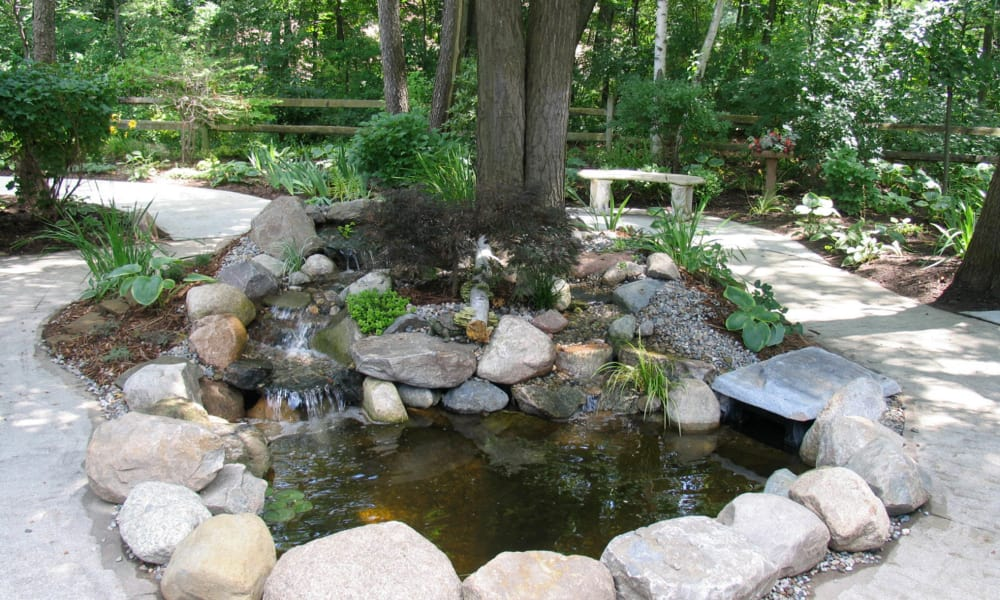 Small pond at Lakeshore Woods, A Randall Residence in Fort Gratiot, Michigan