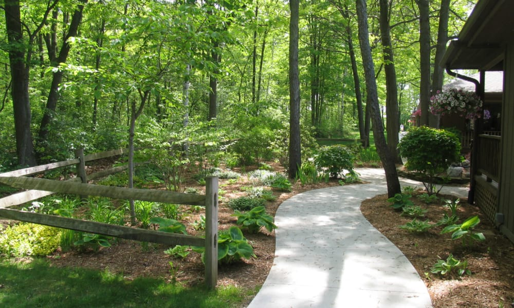 Wooded trail outside Lakeshore Woods in Fort Gratiot, Michigan