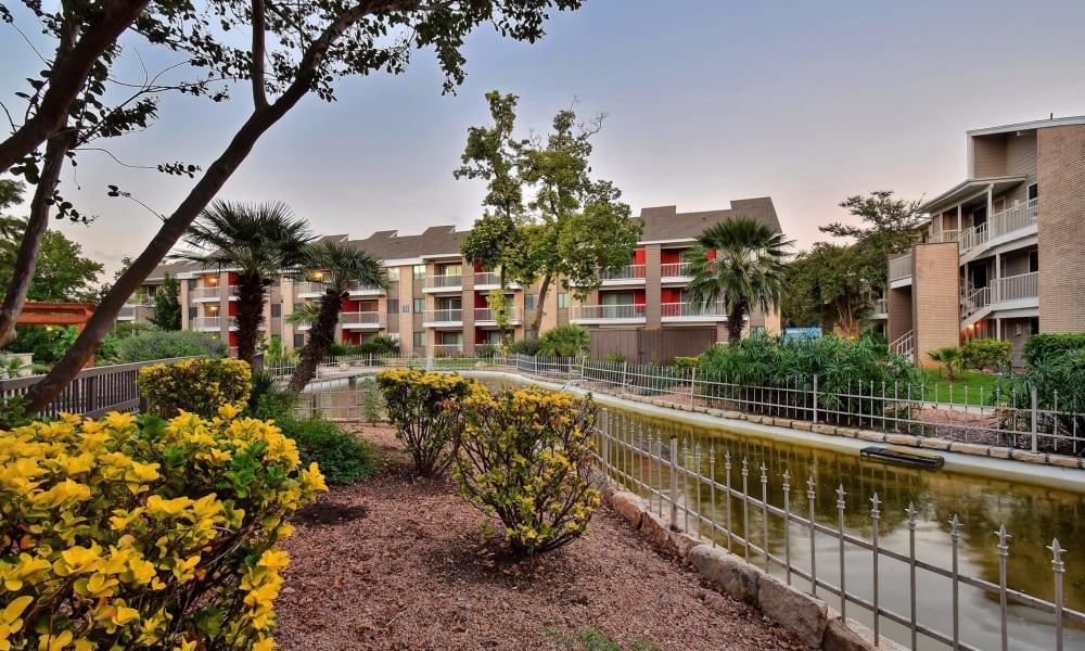 Beautiful garden at Oasis at Oakwell in San Antonio, Texas