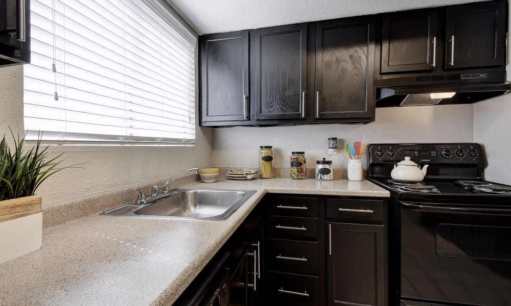 Kitchen features granite countertops at Oasis at Oakwell in San Antonio, Texas