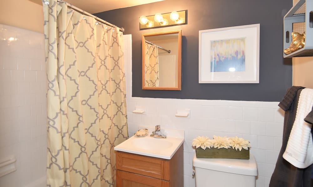 Bathroom at Willow Lake Apartment Homes in Laurel, MD
