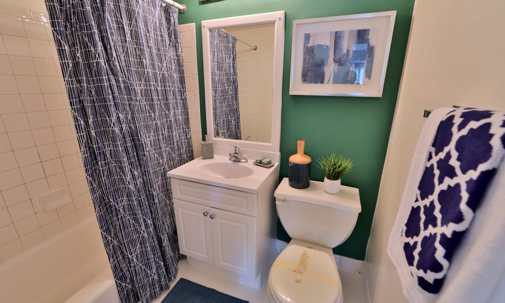 Bathroom at Lynbrook at Mark Center Apartment Homes in Alexandria, VA
