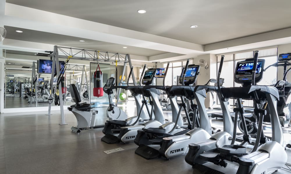 Gym area at Carraway Village Apartments in Chapel Hill, NC