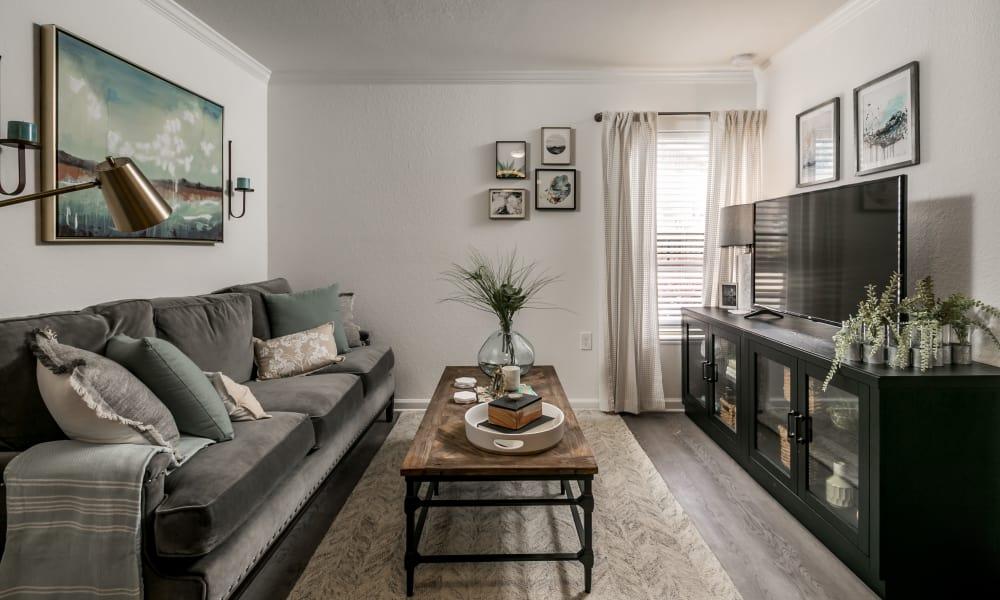 Our apartments in Tuscaloosa, Alabama showcase a beautiful living room