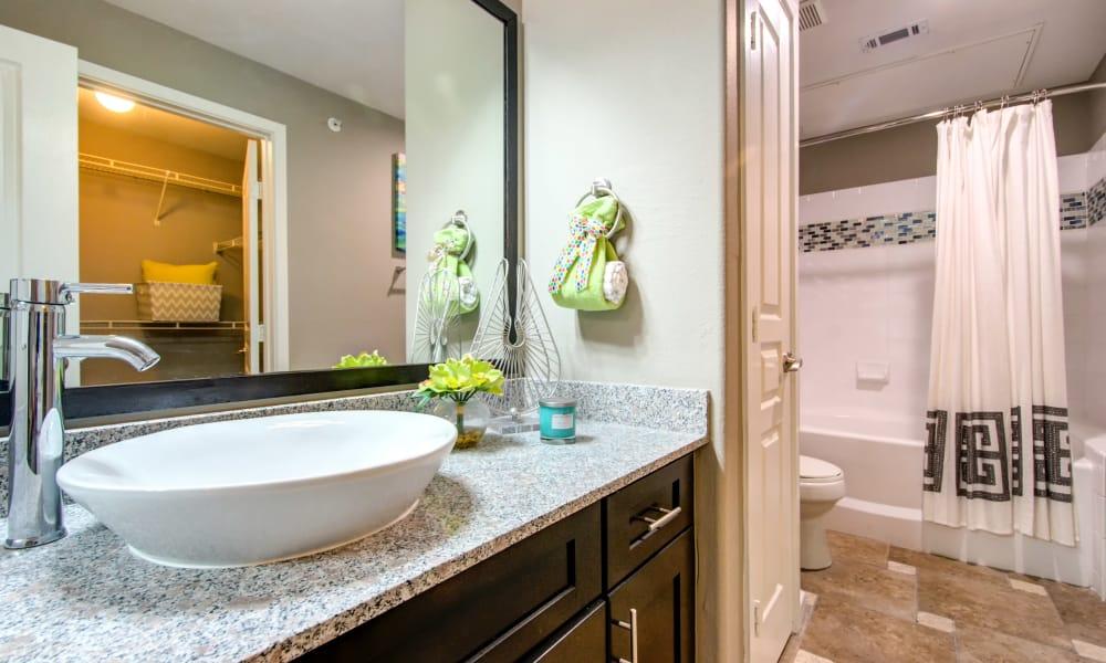 Bathroom at The Niche Apartments in San Antonio, TX