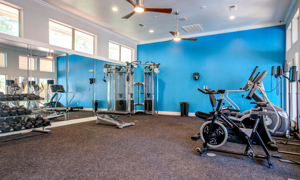 Gym at The Niche Apartments in San Antonio, TX