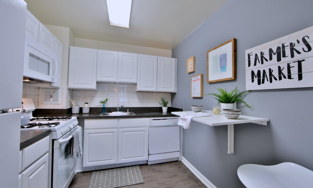 Apartment Kitchen at Willow Run at Mark Center Apartment Homes in Alexandria, VA