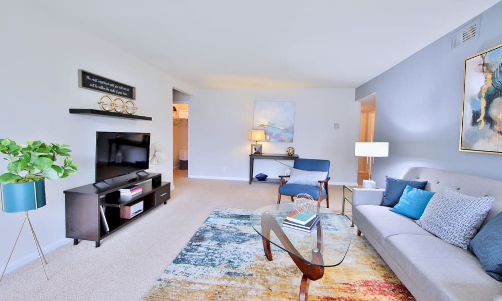 Enjoy a Spacious Living Room at Willow Run at Mark Center Apartment Homes in Alexandria, Virginia