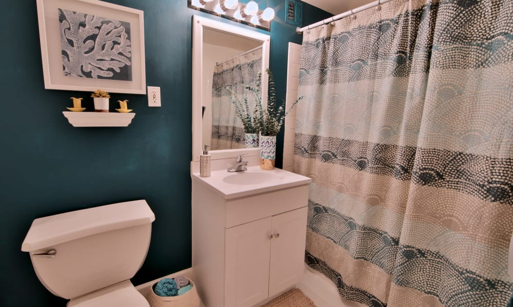 Bathroom in Apartment at Willow Run at Mark Center Apartment Homes in Alexandria, VA