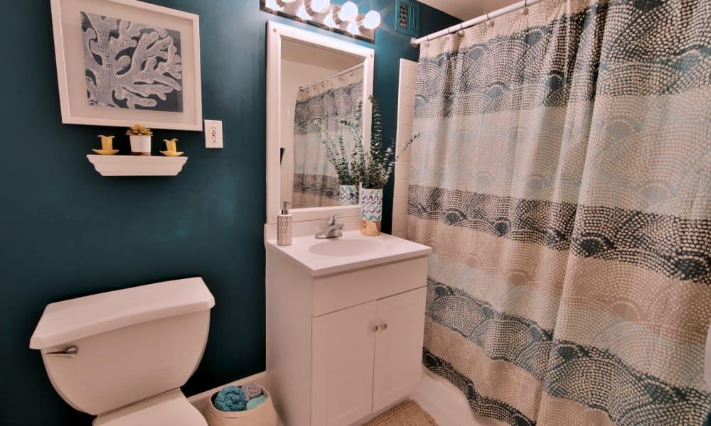 Bathroom in Apartment at Willow Run at Mark Center Apartment Homes in Alexandria, VA