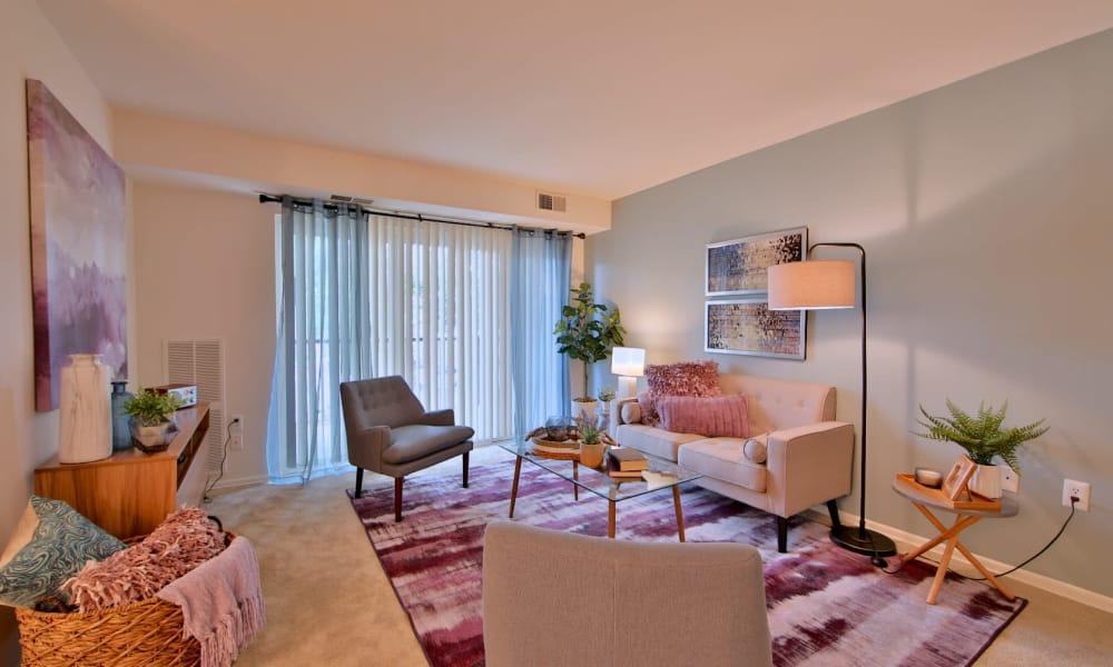 Living Room at Apartments in Alexandria, Virginia