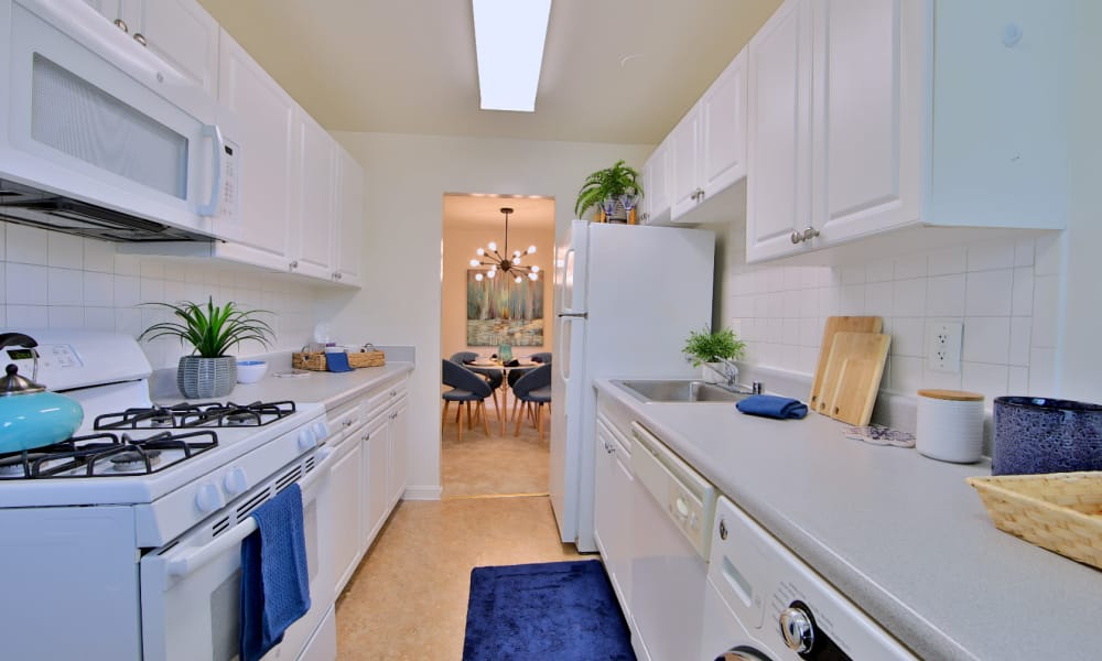 Kitchen at Apartments in Alexandria, Virginia