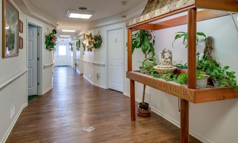 Main hall running through Victorian Place of Owensville in Owensville, Missouri