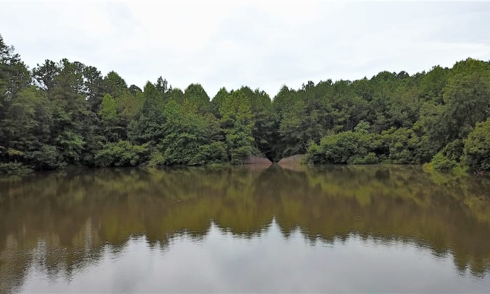 Pond near Lake Crossing in Austell, GA