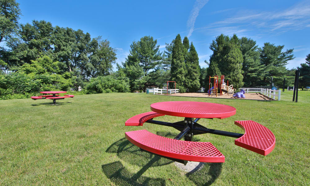 Outdoor Picnic Area & Playground at Willowood Apartment Homes in Westminster, Maryland