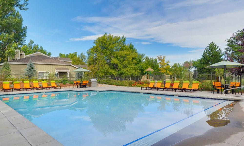 Beautiful swimming pool at Environs Residential Rental Community in Westminster, Colorado