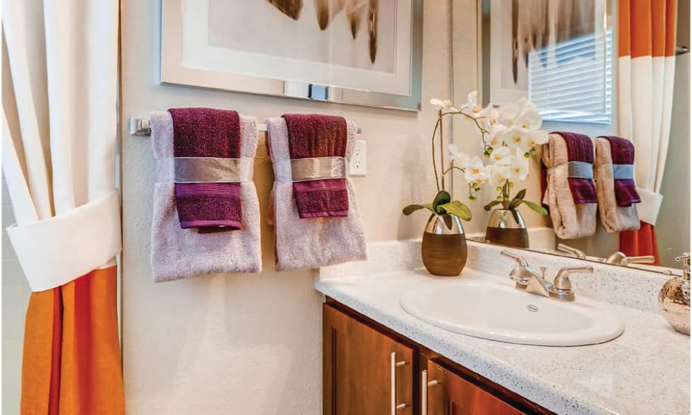 Newly updated bathroom at Environs Residential Rental Community in Westminster, Colorado