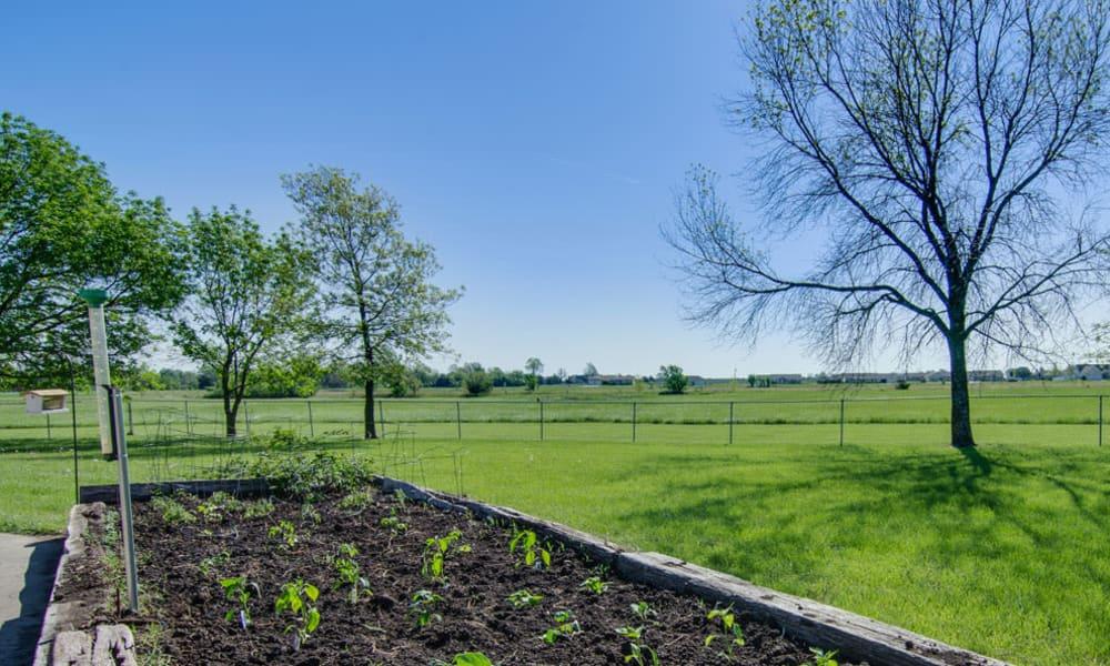Resident garden at Osage Nursing Center in Osage City, Kansas