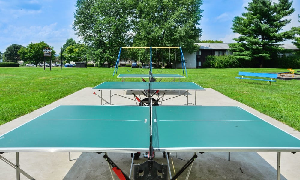 Ping Pong Tables at Briarwood Apartments & Townhomes in State College, PA