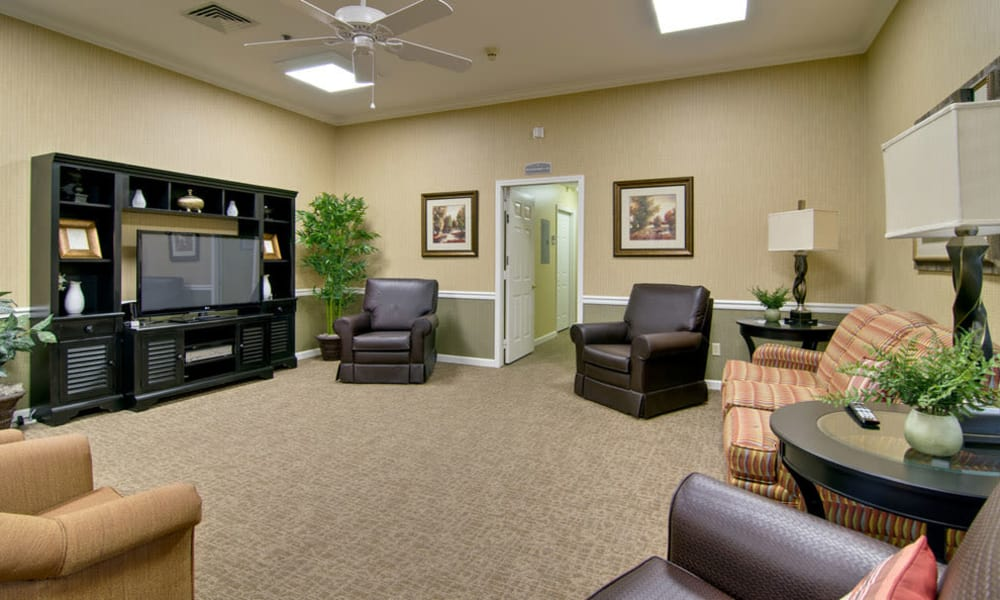 Entertainment room with comfortable seating at Greenbrier Meadows in Martin, Tennessee