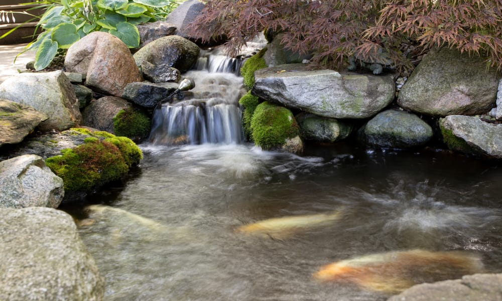 Small pond waterfall at Lakeshore Woods, A Randall Residence in Fort Gratiot, Michigan