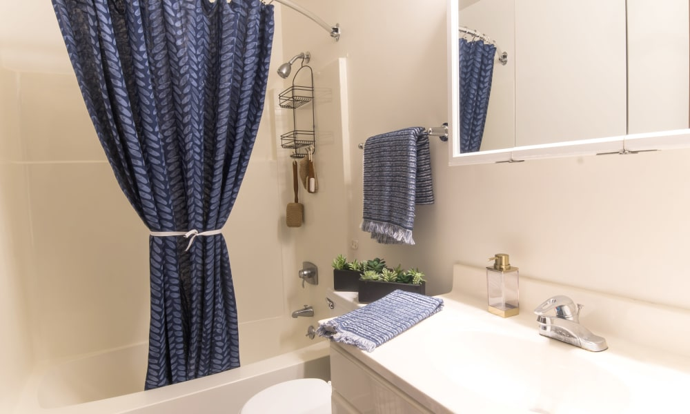 Bathroom at Squires Manor Apartment Homes in South Park, Pennsylvania