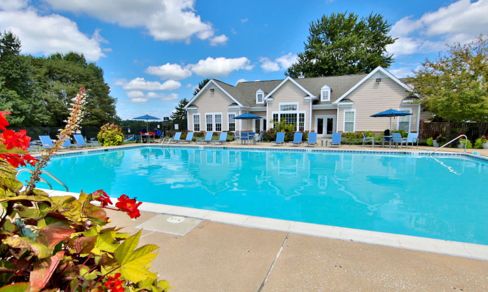 Enjoy Apartments with a Swimming Pool at Westerlee Apartment Homes