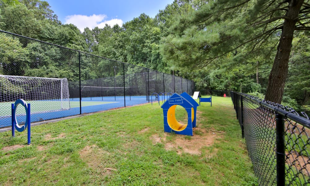 Pet friendly apartments in Randallstown, Maryland