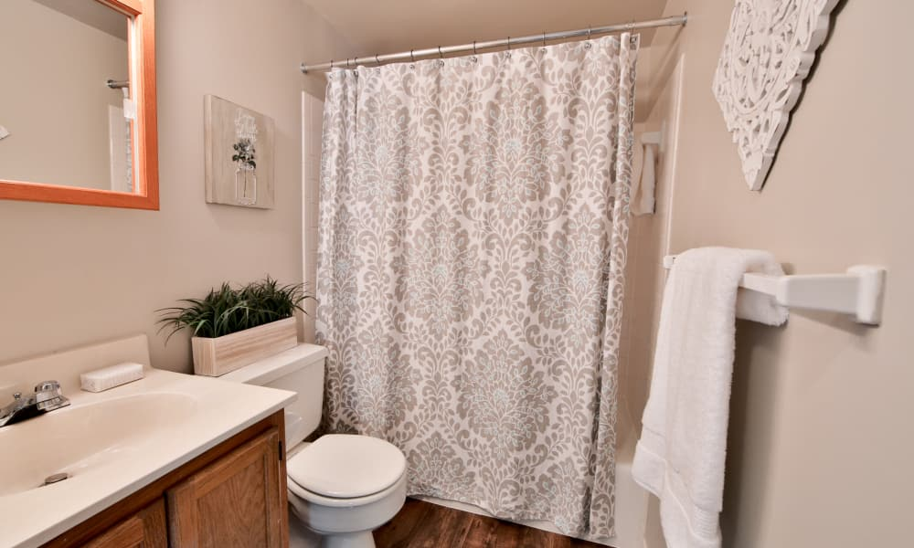 Bathroom at The Preserve at Owings Crossing Apartment Homes in Reisterstown, Maryland
