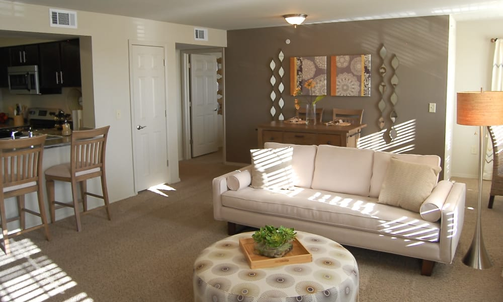 An apartment living room at Park at Coulter in Amarillo, Texas