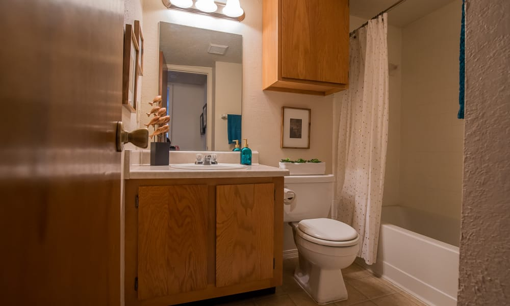 Cozy bathroom at Silver Springs Apartments in Wichita, Kansas