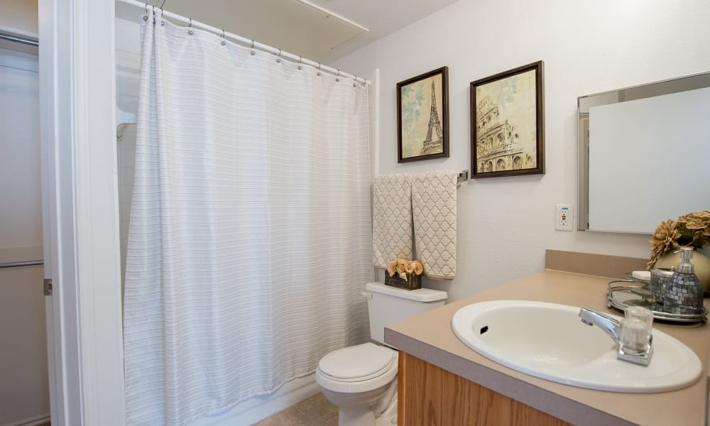An apartment bathroom at The Pointe of Ridgeland in Ridgeland, MS