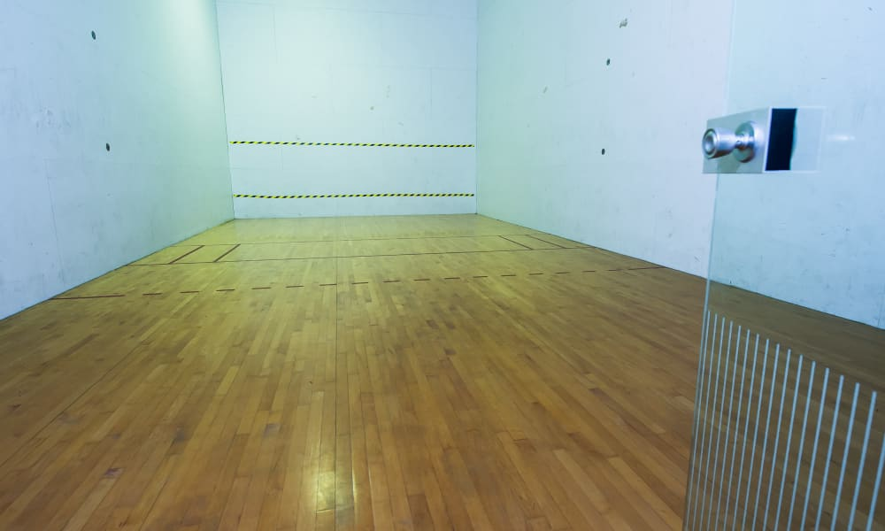 Racquetball Court at The Pointe of Ridgeland in Ridgeland, Mississippi