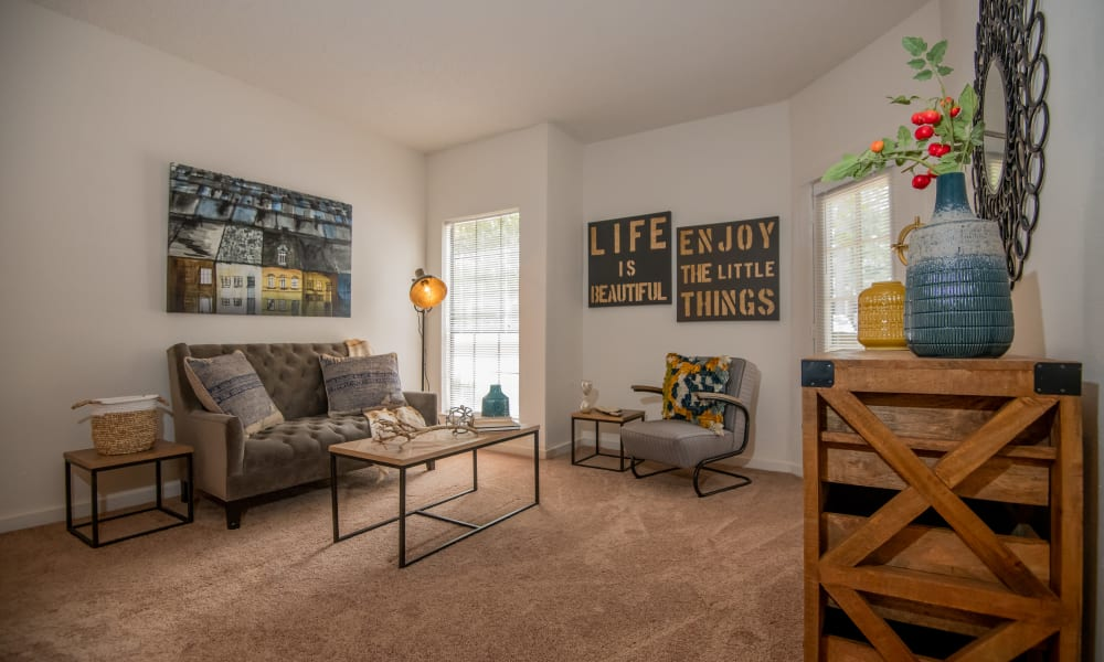 An apartment living room at The Trace of Ridgeland in Ridgeland, MS
