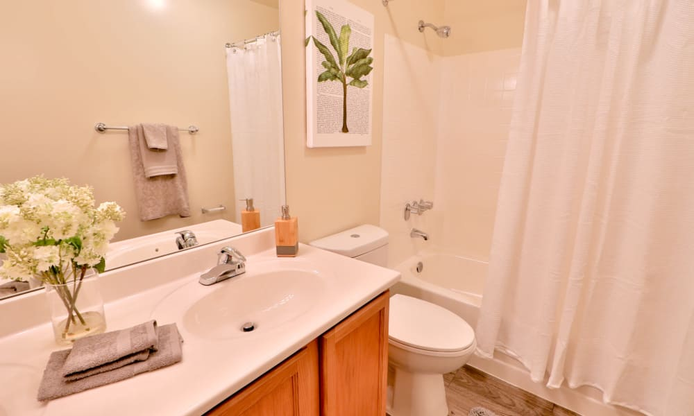 Bathroom at The Townhomes at Diamond Ridge in Baltimore, Maryland