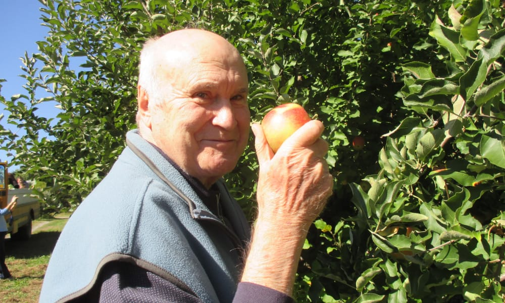 A resident from Palms at Bonaventure Assisted Living in Ventura, California picking apples