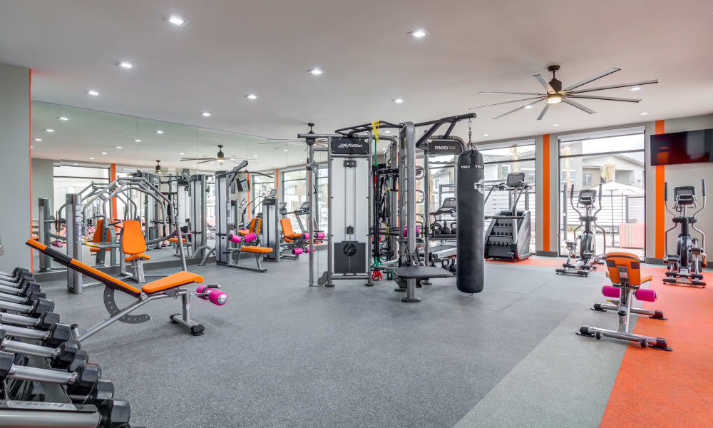 Enjoy Apartments with a Gym at Trend! in Las Vegas, Nevada