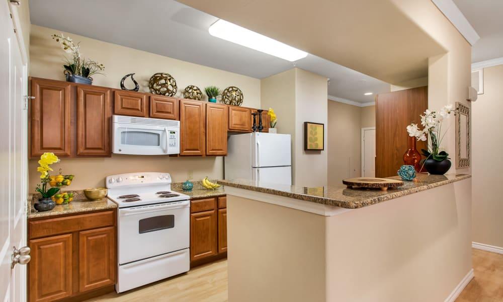 Plank flooring in a spacious kitchen at Villas in Westover Hills in San Antonio, Texas