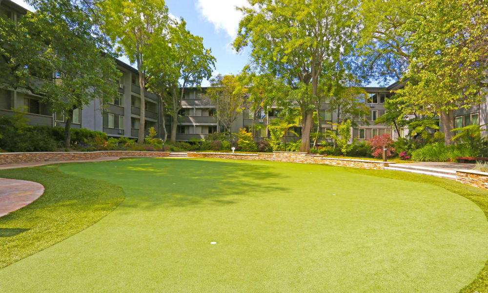 Putting green at Palo Alto Plaza in Mountain View, California