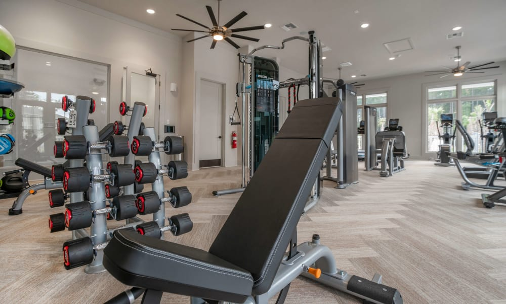 Weights and exercise machines in a gym at Alta Brighton Park in Summerville, ((location_state}}