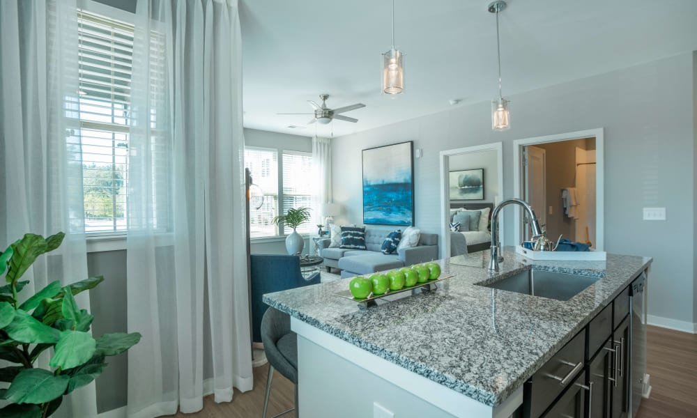 Kitchen with an island at Alta Brighton Park in Summerville, ((location_state}}
