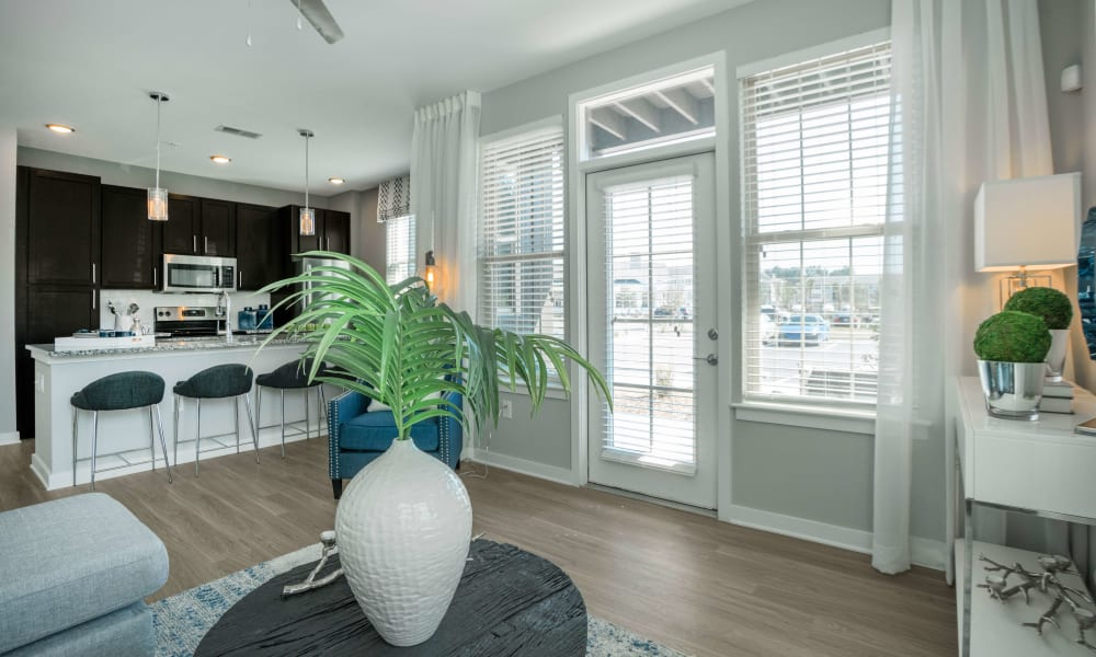 View of living area and kitchen at Alta Brighton Park in Summerville, ((location_state}}