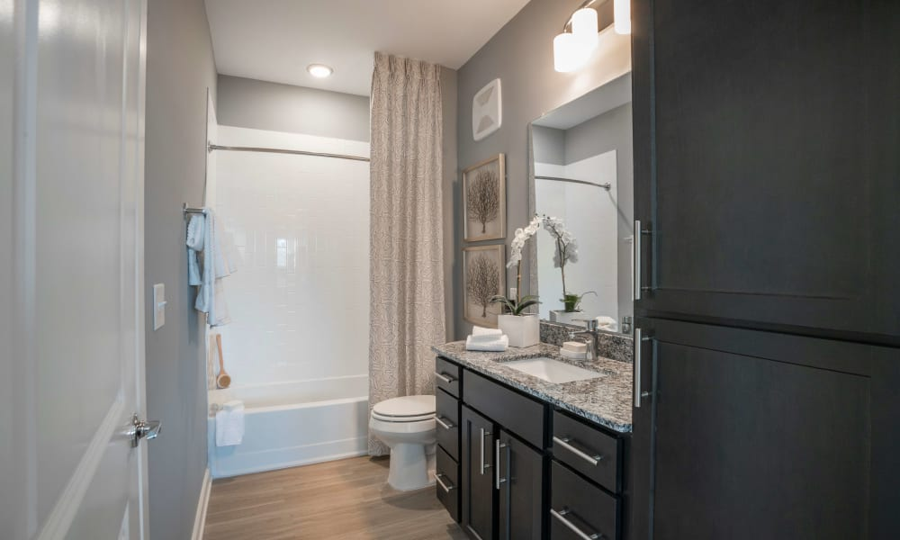 Bathroom with dark cabinetry at Alta Brighton Park in Summerville, ((location_state}}