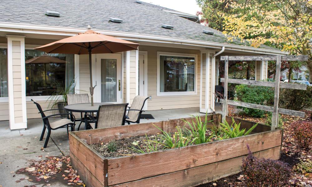Community garden at Woodside Senior Living in Springfield, Oregon